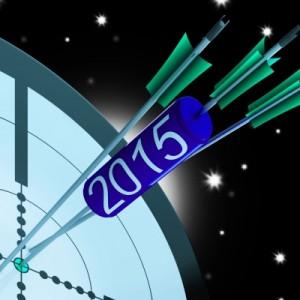 2015 bullseye