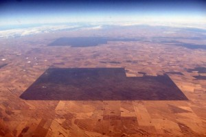 An area of vegetation can be seen amongst drought effected farmland in South Australia