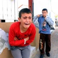 children at slaughterhouse