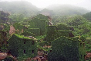 creepers on deserted village